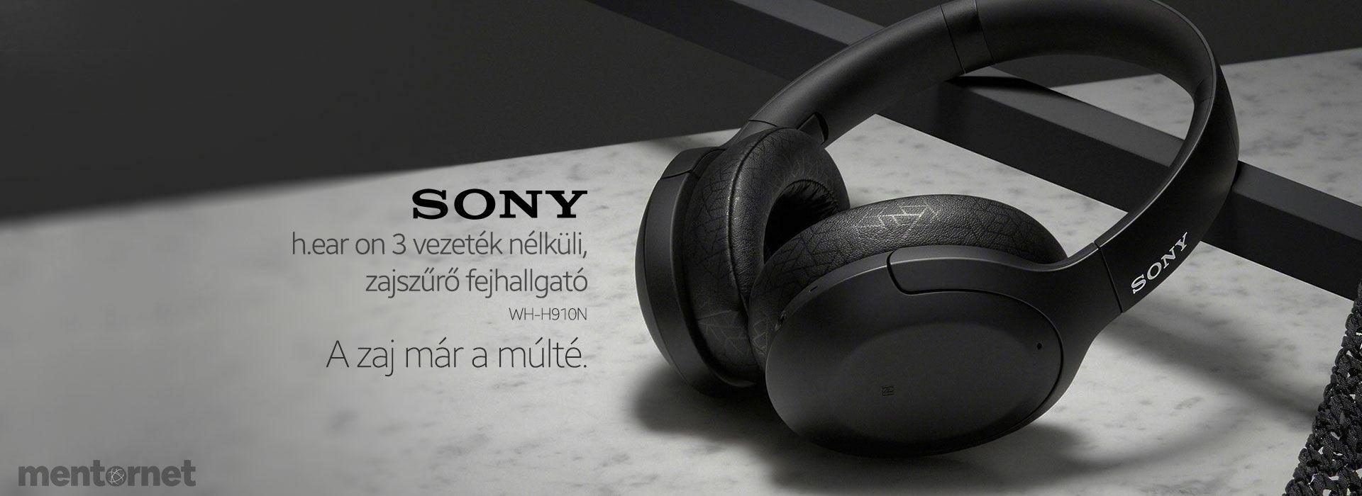 sony_whh910n
